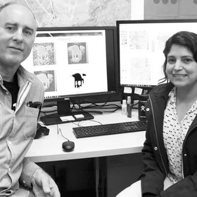 PhD Interns Help DST Research Surge Ahead