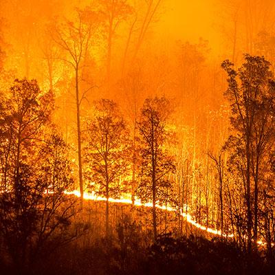 Data Experts Deliver Life-Saving Bushfire Tool